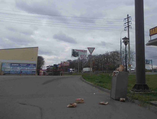 Макдональдс, Ермолино, Дмитровский район, ГАТН