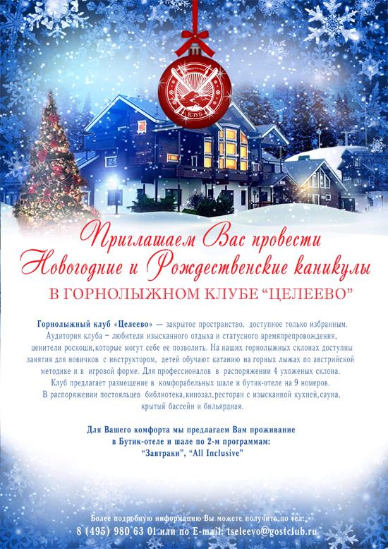 Новый год в Целеево
